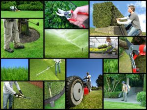 landscaping websites
